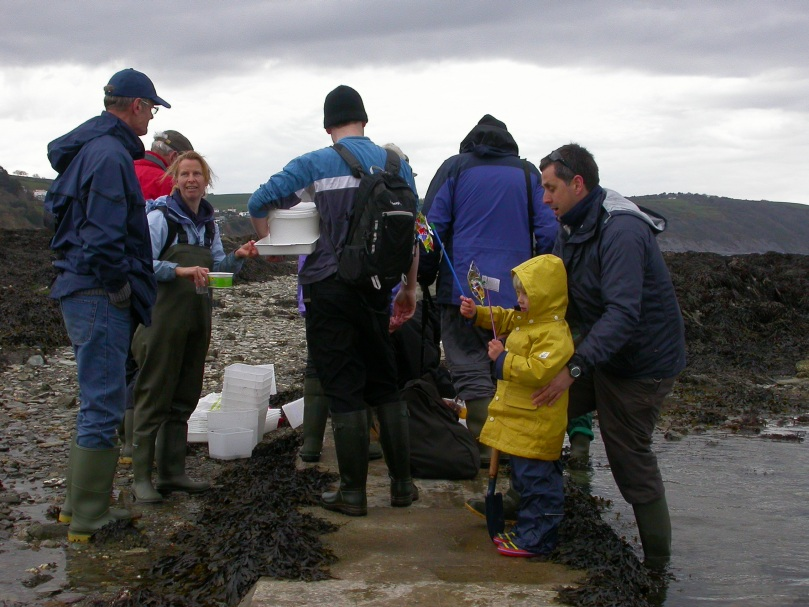 Rock pooling for all ages in Cornwall, all year round.
