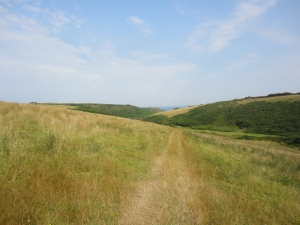 The path to Porth Mear from Pentire Farm, Park Head.