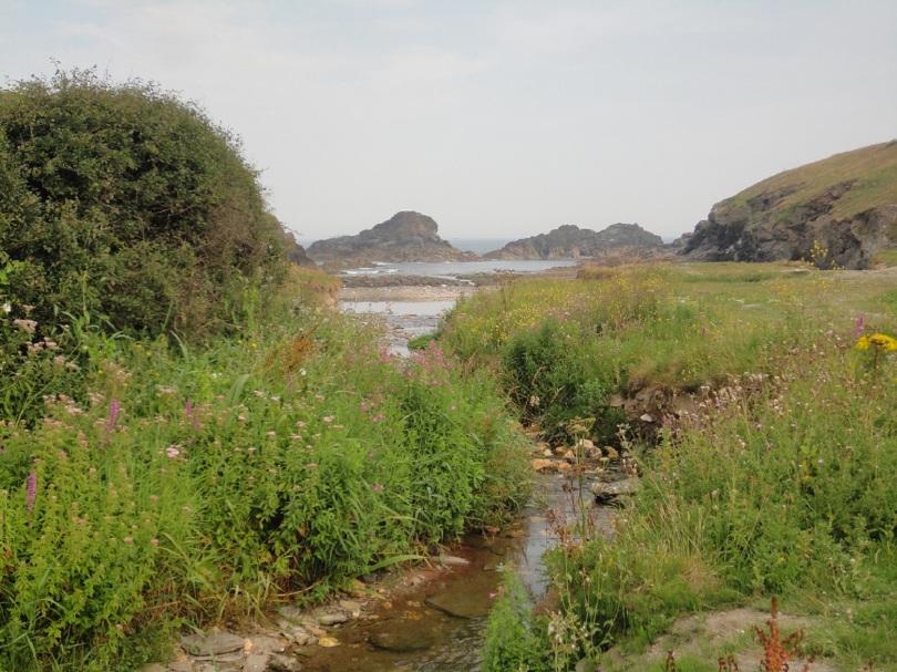 Porth Mear, Porthcothan, Cornwall. Rock pools.