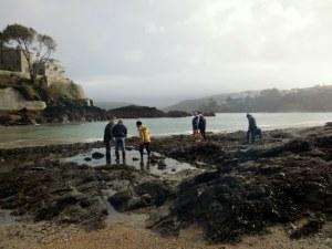 Rockpooling at Readymoney Cove