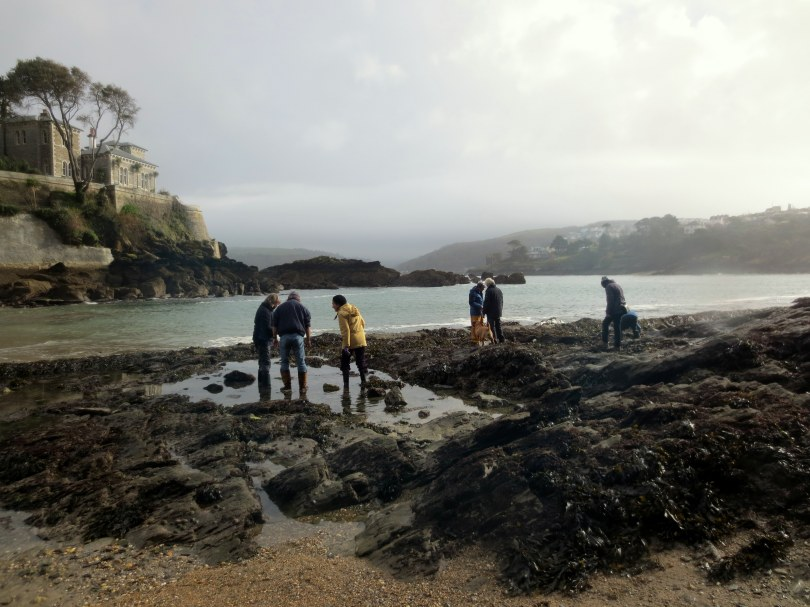Rockpooling at Readymoney Cove