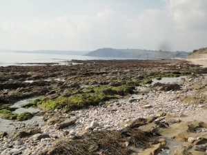 Rock pools at Castle Beach, Falmouth, Cornwall.