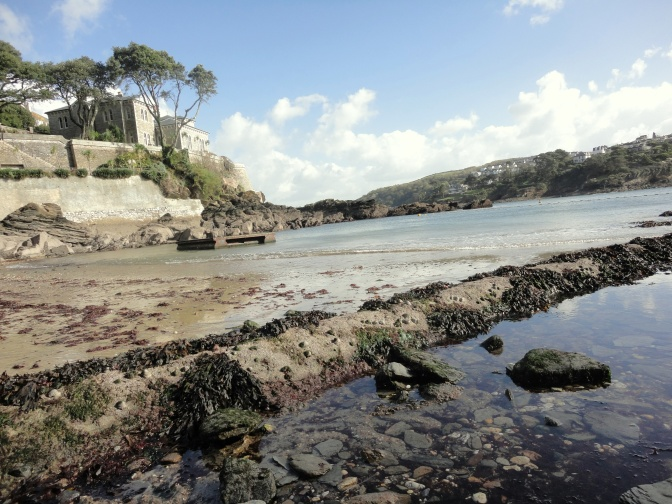 Rockpools at Readymoney Cove, Fowey at low tide
