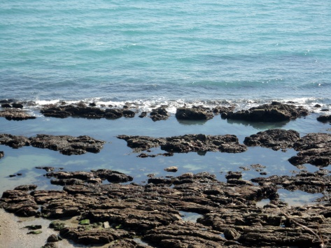 Enticing Cornish rock pools in the sunshine