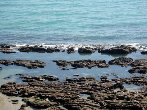 Enticing Cornish rock pools in the sunshine