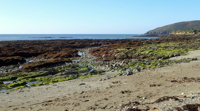 Cornish rock pools in early autumn