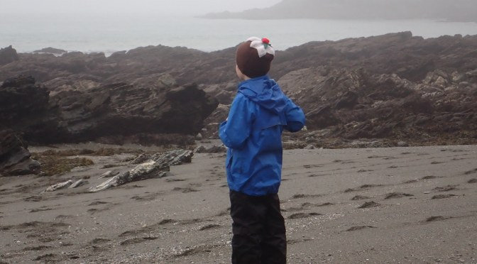 Cornish Rock Pools Junior deep in contemplation