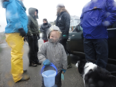 Junior's training in rockpooling in all weathers started early - out with Countryfile age 3