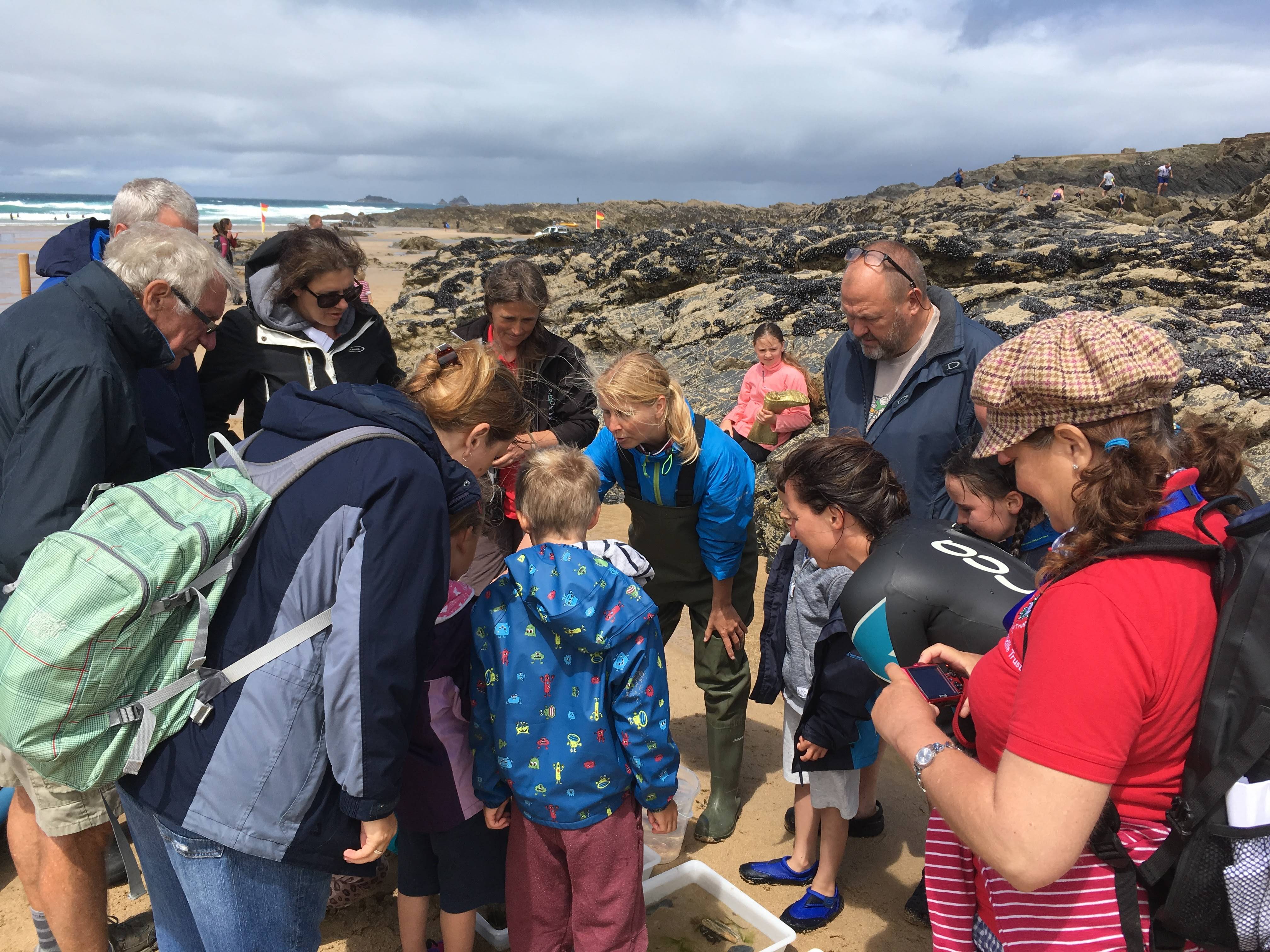 2017 was my first year of leading events for the Cornwall Wildlife Trust's junior branch. I used to love the events as a kid and introducing a new generation and their families to jellyfish, starfish and other rockpool creatures is so much fun! I can't wait for my 2018 Wildlife Watch events and the Looe Marine Conservation Group rockpool rambles where I also volunteer.