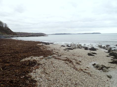 Bream Cove looking towards Falmouth.