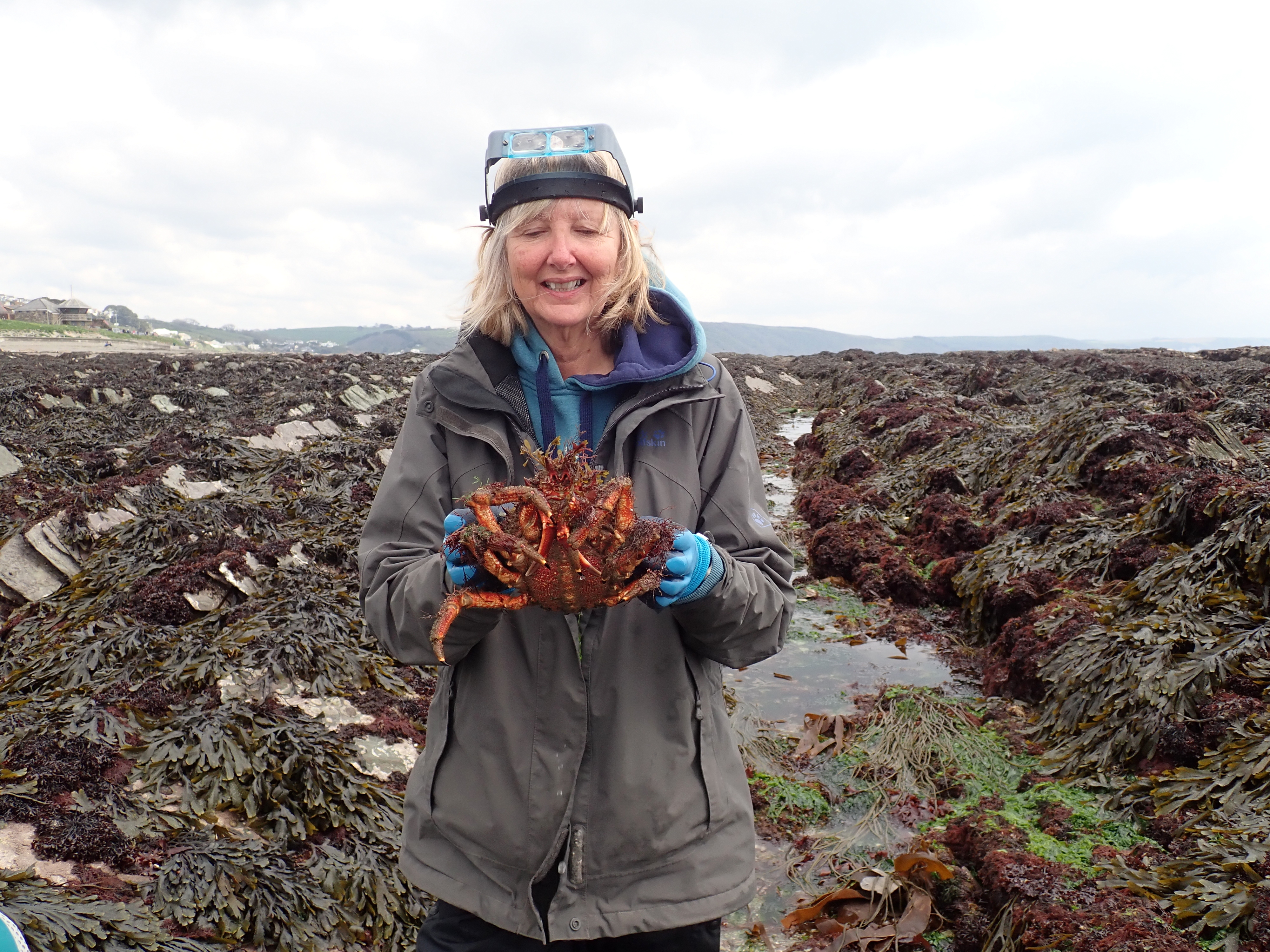 Julie with her spider crab
