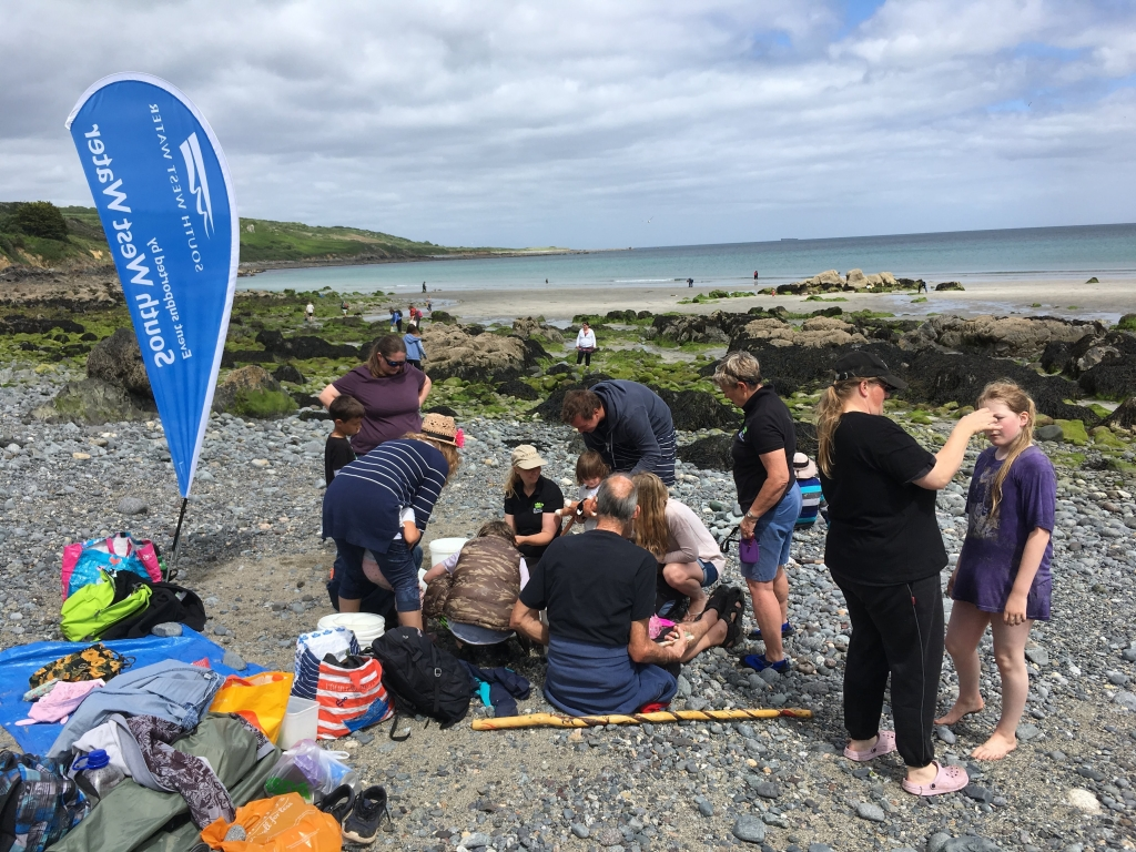 Rock pooling with Wildlife Watch at Coverack, the Lizard