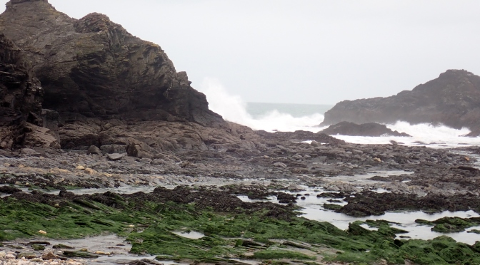 Blustery Rock Pooling in North Cornwall