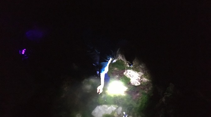 A Night Out In The Rock Pools